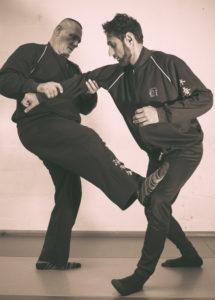 Wolverhampton Wing Chun